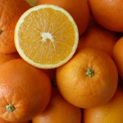 15 Kg. Naranjas ecológicas