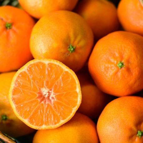10 Kg. Mandarinas ecológicas