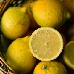 15 Kg. Limones Ecológicos