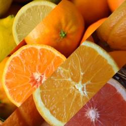 10 Kg. Mix Cítricos Ecológicos